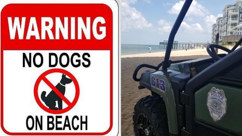 Virginia Beach, no dogs allowed