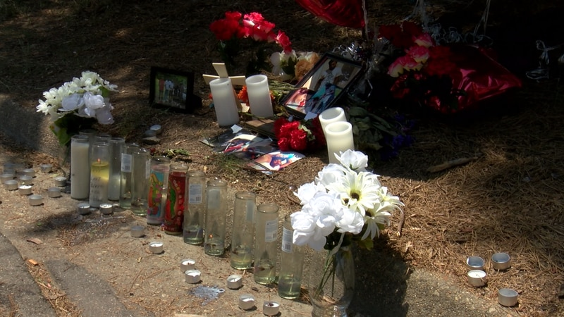 A memorial was set up along Beck Drive in memory of Steven Whisnant, III who was shot and...