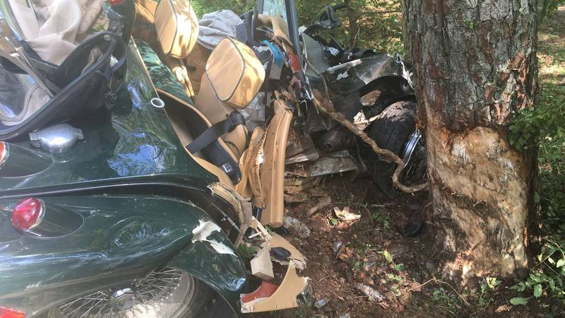 Virginia State Police say a 73-year-old man was killed after striking a tree in Charles City...