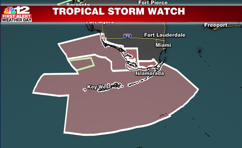 Tropical Storm Watches in effect for parts of Florida