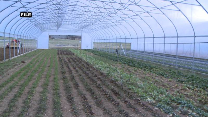 The U.S. Senate has passed a bill to give farmers a financial boost.