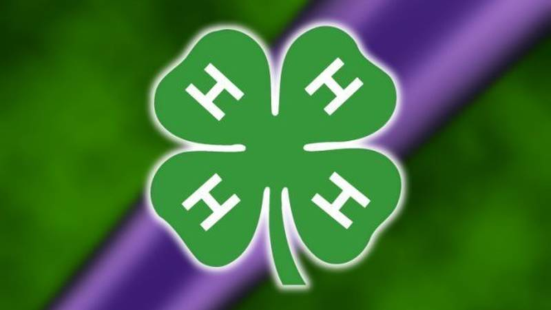 Henrico 4-H is offering Super Science STEM kits to provide second- through fifth-graders with...