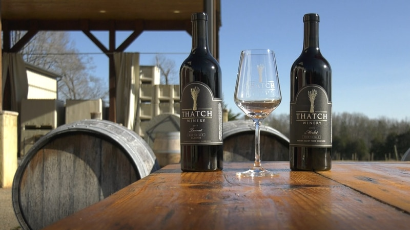 Thatch winery won two gold medals in the 2021 Virginia Governor's Cup.