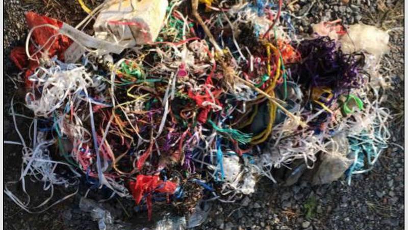 Balloons make up the majority of debris on Virginia beaches.