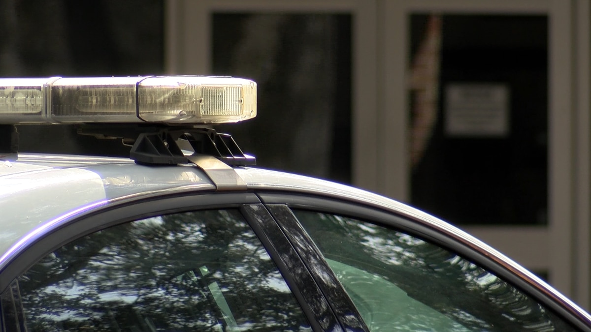 Parents have created a petition to keep school resource officers in Charleston County schools.