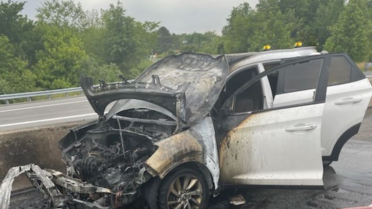 Photos provided by Virginia State Police show a charred vehicle after a fire on Interstate 95.