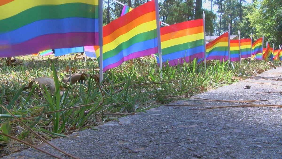 A Valdosta man is facing charges after police say he stole several pride flags and a yard sign...