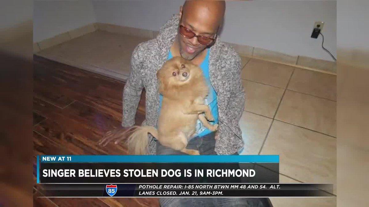 stolen dog in richmond