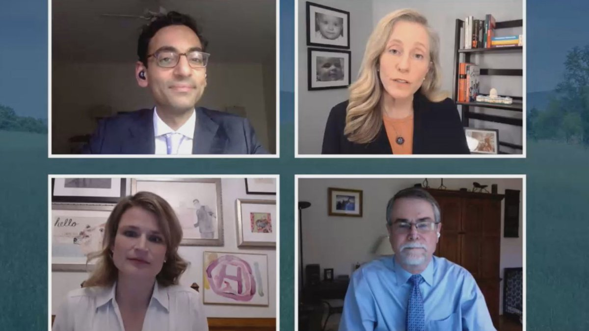 Abigail Spanberger's virtual town hall on March 31, 2021.