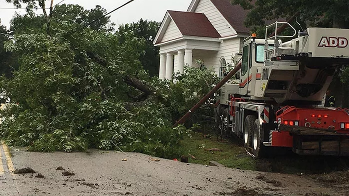 When storms roll through, some big, old trees take a beating; Slamming into power lines, even...