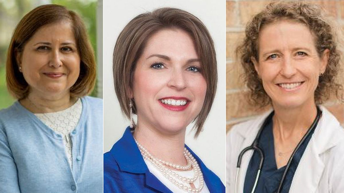 Over 85 women - Republicans and Democrats - ran for the House and Senate in Virginia this year.