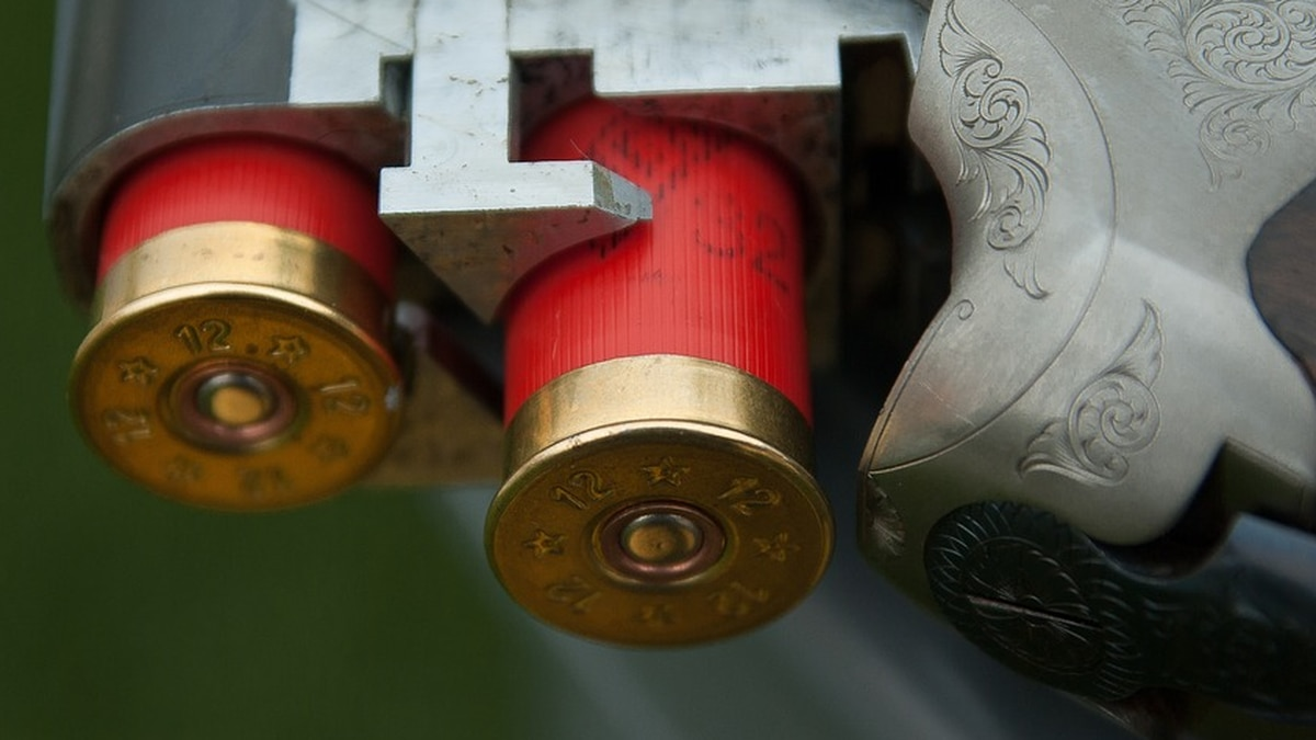 FBI statistics show that criminal background check requests submitted for gun sales in Virginia...