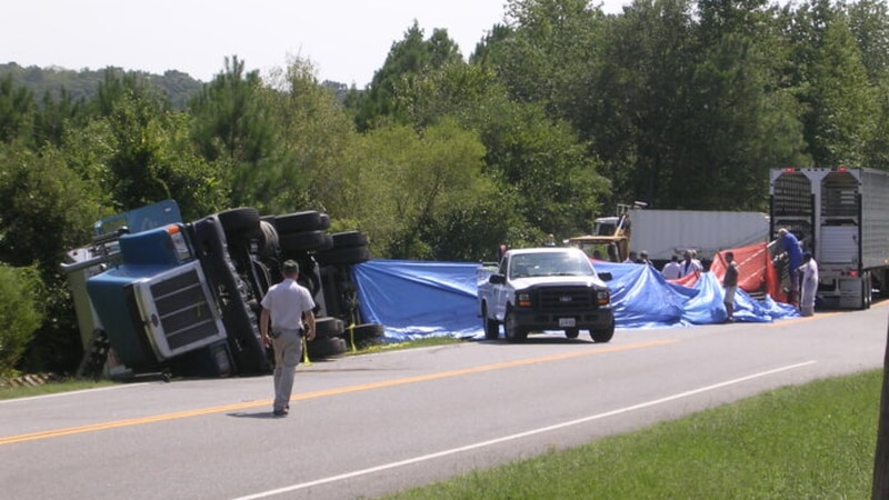 A truck carrying hogs overturned in September 2008 on State Route 10 in Suffolk.