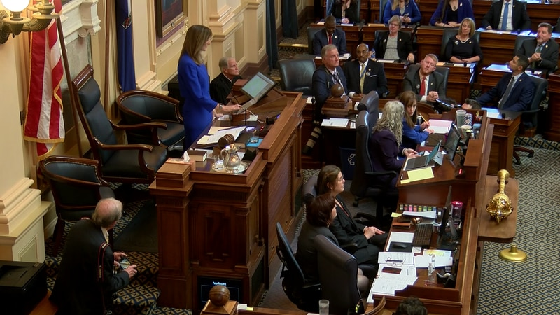 The 2020 Virginia General Assembly begins.