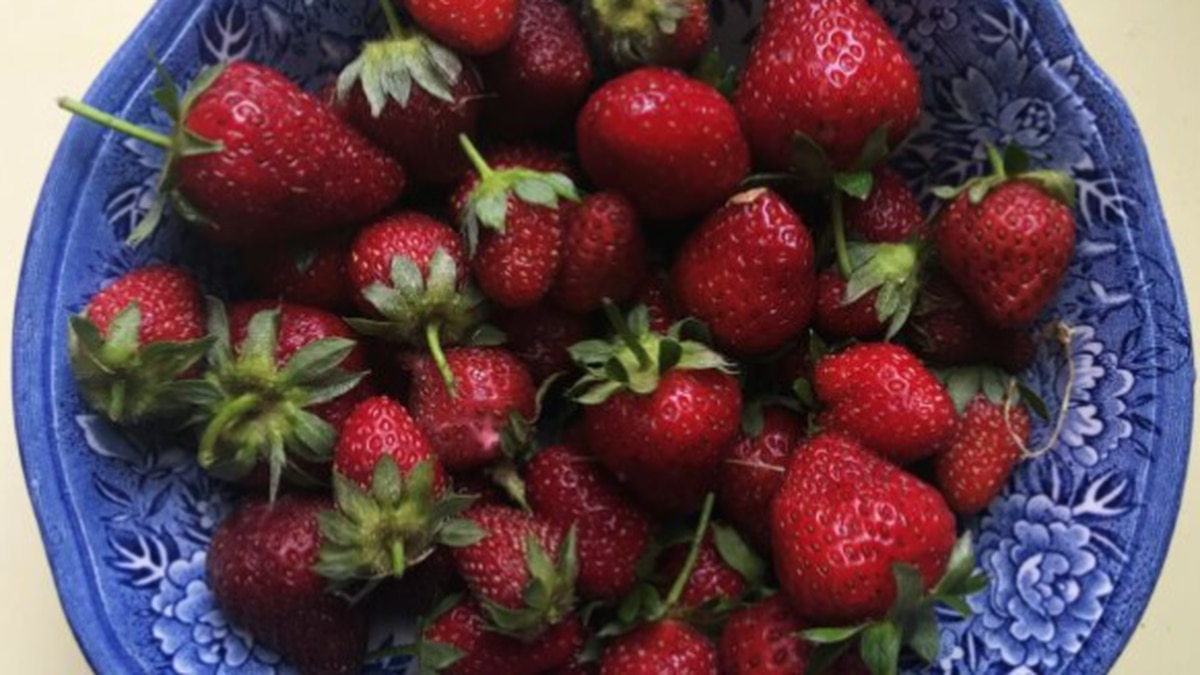 A bowl of strawberries.