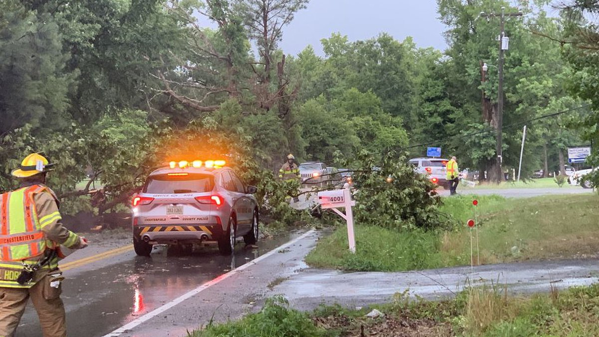 A tree down at Branders Bridge and Lakeview Road in Chesterfield.