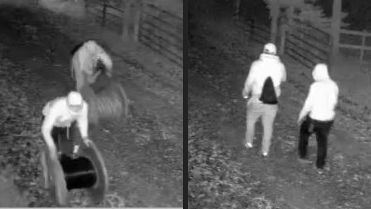 Chesterfield County Crime Stoppers released photos of two individuals who appear to be stealing...