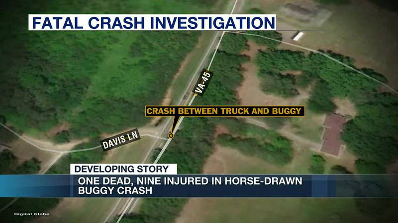 Mother killed, 9 others injured in horse-drawn buggy crash