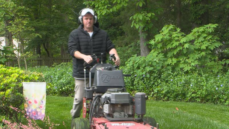 Owner of Greentop Lawn Care