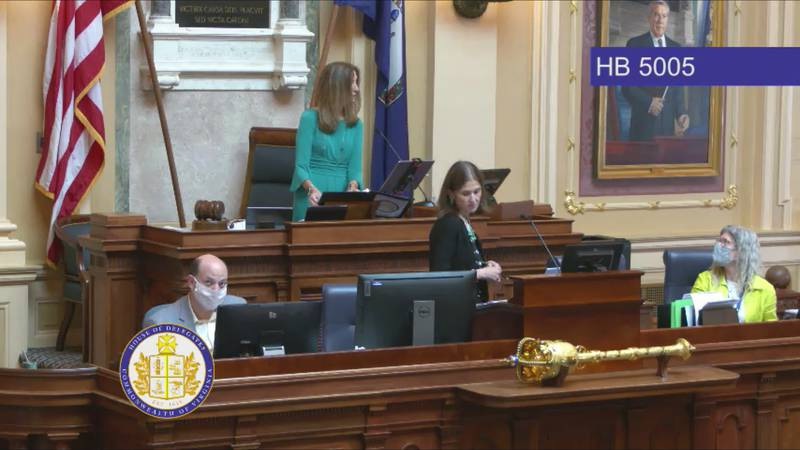 The Virginia House of Delegates deliberates virtually on a budget bill.