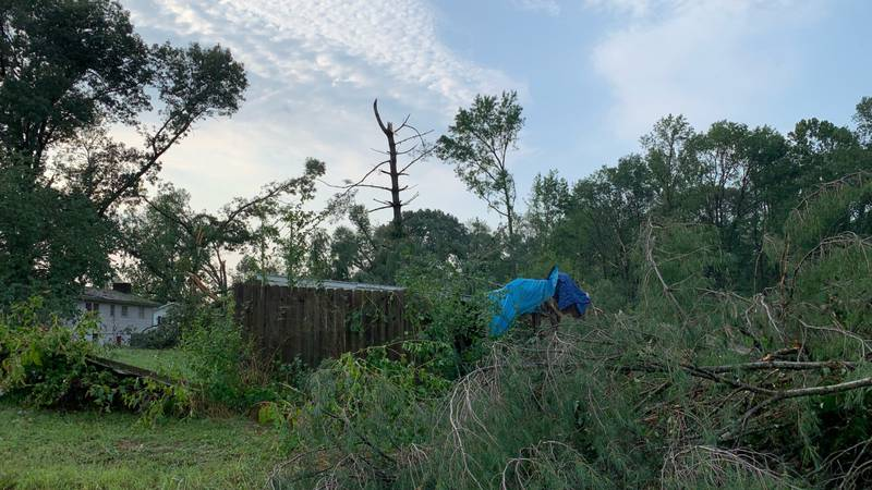 A spokesperson for the Stafford County Fire Department said storms caused multiple trees and...