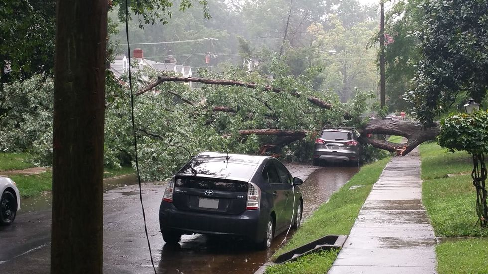 A tree fell onto a parked vehicle on Devonshire Road in Richmond, Virginia.
