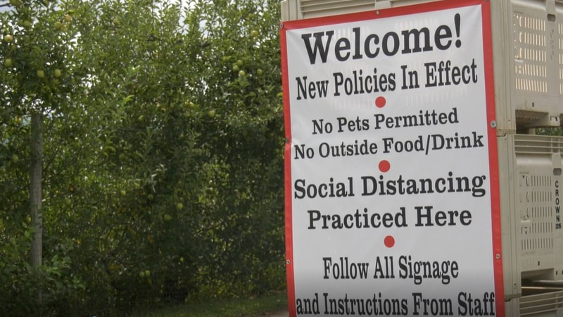 Carter Mountain Orchard has new policies during apple picking season.